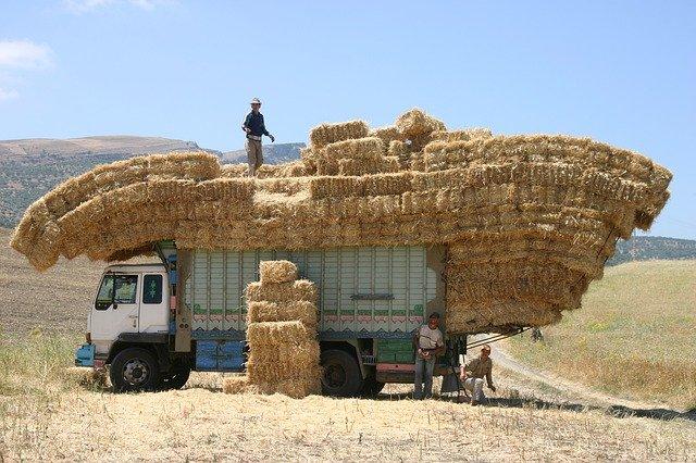 Exceptioneel transport